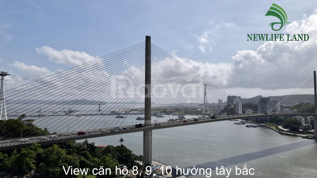 Nhận cọc vị trí mặt biển chung cư Green diamond  Hạ Long (ảnh 6)