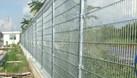 Hàng rào lưới thép mạ kẽm, hàng rào kho, hàng rào sơn tĩnh điện D5 (ảnh 8)