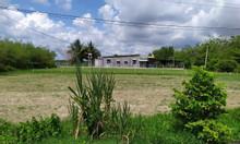 Công ty phá sản, bán gấp đất lô đất 790m2 giá chỉ từ 6.5tr/m2.