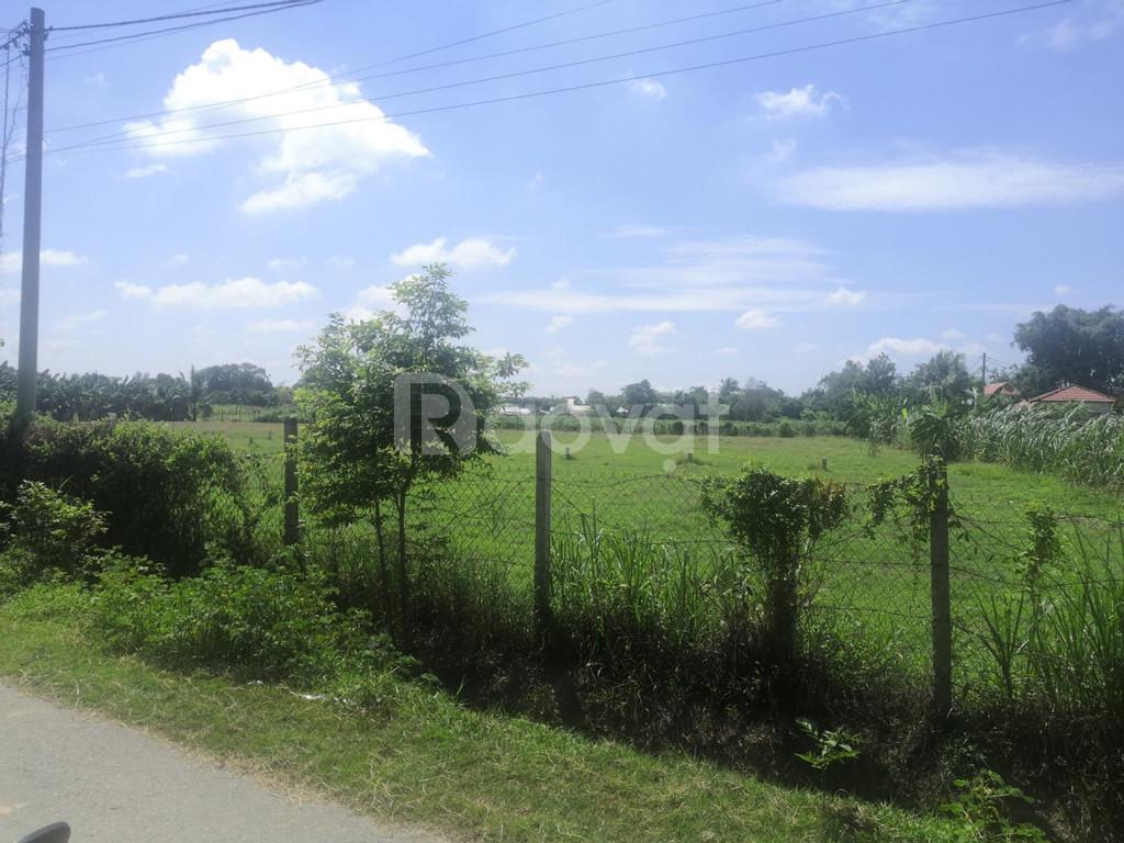 Cần bán gấp 364m2 đất full thổ cư shr giá chỉ 11tr/m2