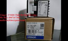 Bộ điều khiển nhiệt độ Omron E5CC-CX2ASM-800