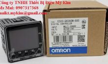 Bộ điều khiển nhiệt độ Omron E5CC-QX2ASM-800