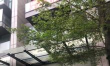 Suất ngoại giao Shophouse mặt đường Hào Nam