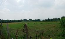 Cần bán đất nền thổ cư Củ Chi 364m2 giá 3,9 tỷ có shr