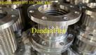 Nhà sản xuất chào giá khớp nối mềm chống rung mặt bích, ống nối inox (ảnh 3)