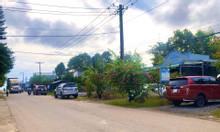 Bán đất làm kho xưởng 4801m2 tại Phước Bình, Long Thành.