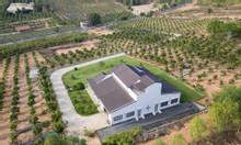 Tôi cần bán lô đất diện tích 2ha giá 50.000/m2 thích hợp trồng dưa