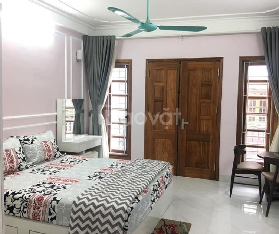 Nhà đẹp Phan Kế Bính, Ba Đình, 45m2, ô tô, giá rẻ (ảnh 5)