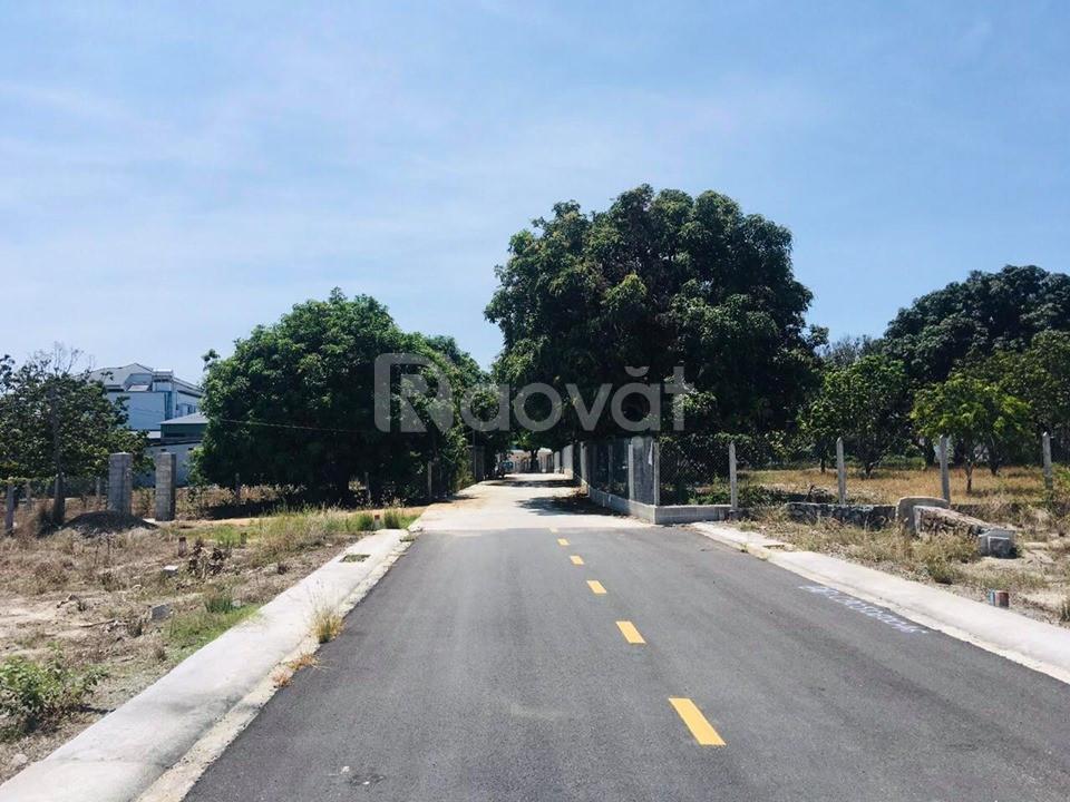 Bán lô đất khu Mango City Cam Lâm.