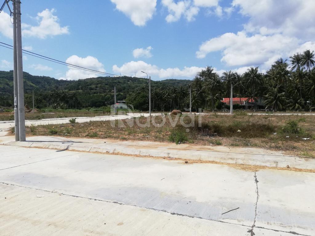 Bán đất Phú Yên, KDC Đồng Mặn, sông cầu giá rẻ chỉ 500tr (ảnh 7)