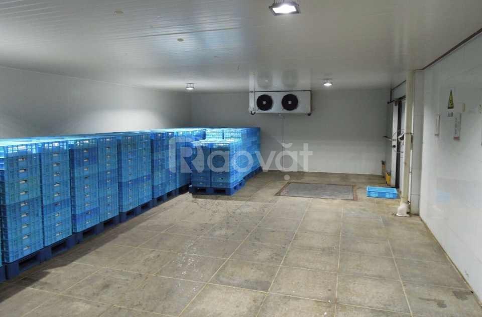 Báo giá, lắp đặt kho lạnh chất lượng (ảnh 5)
