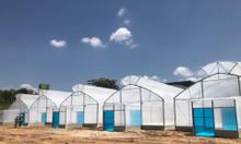 Công ty thiết kế nhà kính nông nghiệp,công ty thi công nhà kính