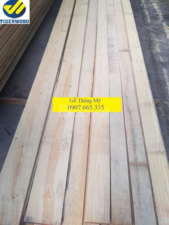 Báo giá gỗ thông mỹ Bình Dương