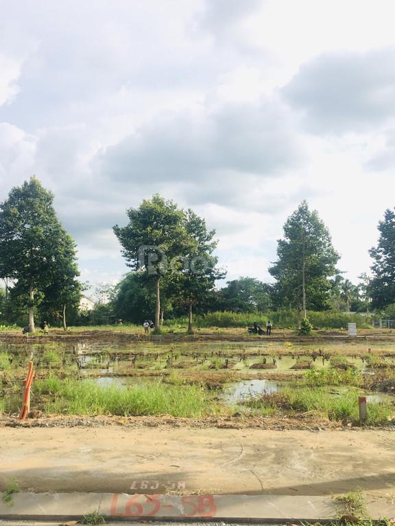 Bán nền vị trí đẹp, gần công viên cây xanh Zen Garden đẳng cấp