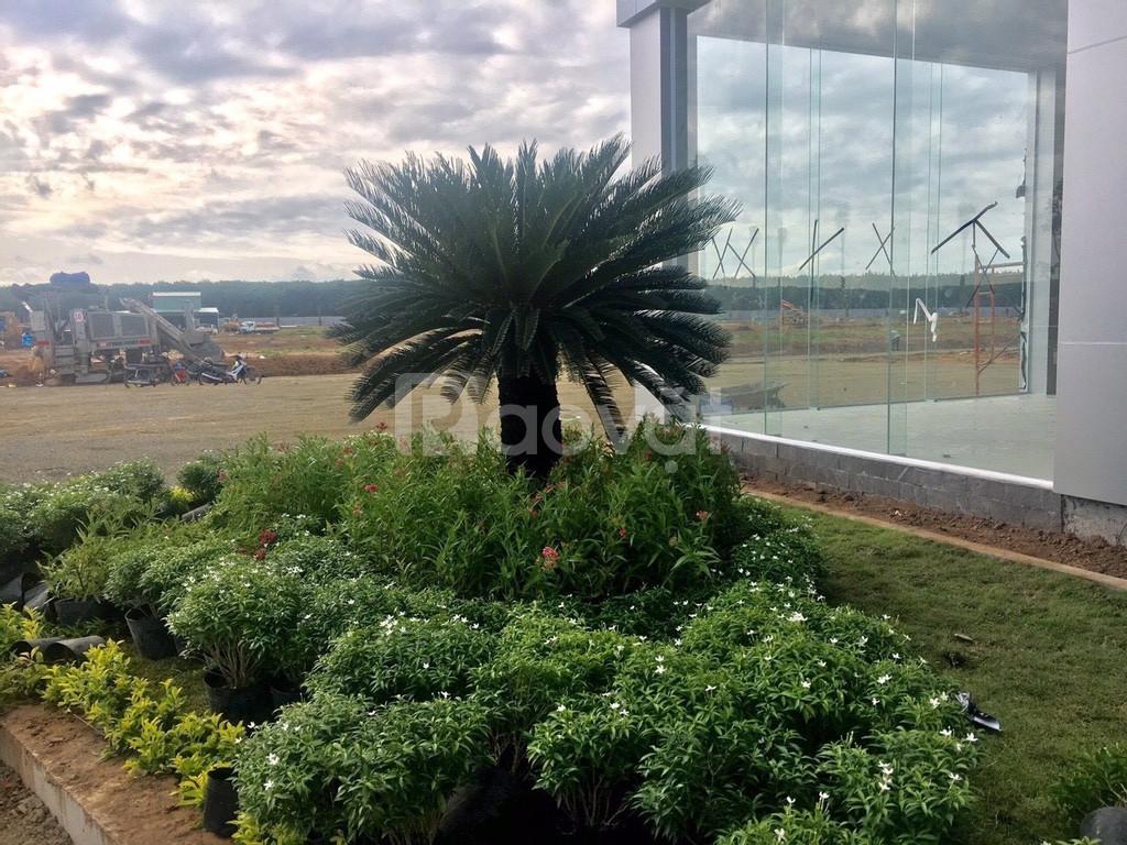 Dự án ngay sân bay Long Thành, khu tái định cư Bình Sơn (ảnh 6)