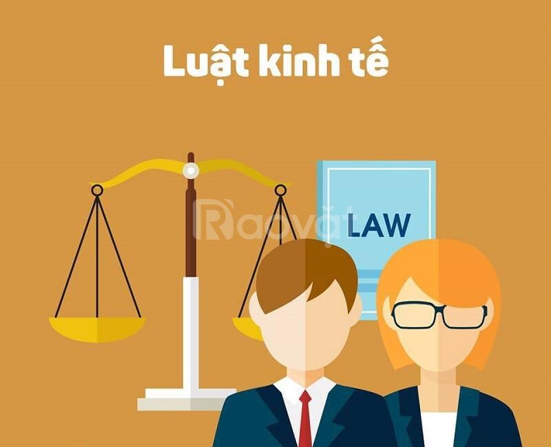 Tuyển sinh đại học ngành luật kinh tế hệ từ xa tại Bình Phước (ảnh 1)