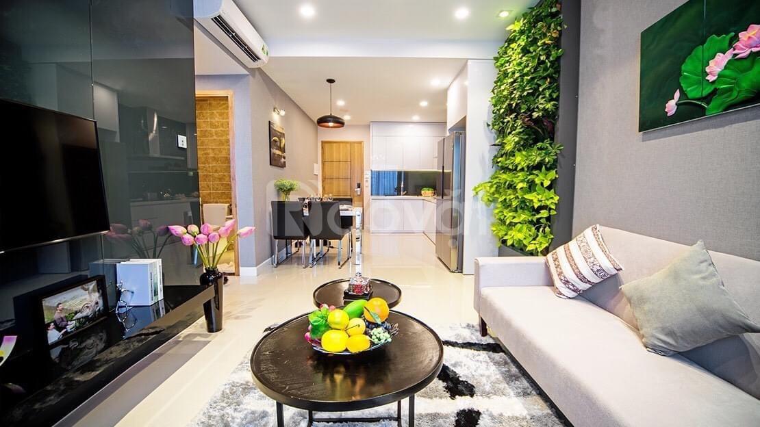 Sỡ hữu căn hộ thương mại cao cấp chỉ cần 240 tại Phú Mỹ, BR-VT (ảnh 6)