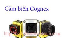 Cảm biến Cognex