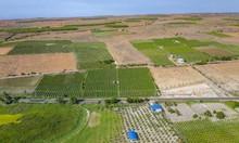 Cần bán lô đất vườn, vuông vức, nở hậu 6833m2 chỉ 478 triệu