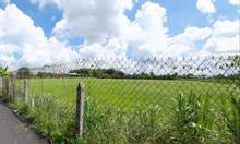 Cần bán lô đất 100% đất thổ cư tại tĩnh lộ 7 Củ Chi