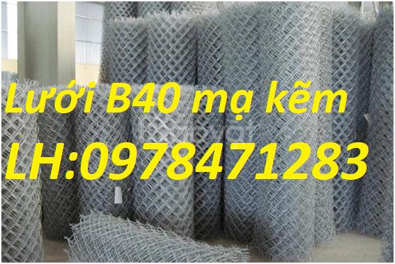 Cung cấp lưới hàng rào B40, lưới B40, lưới thép B40 giá rẻ (ảnh 5)