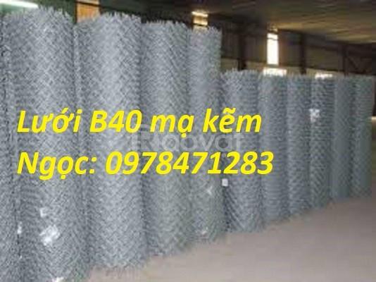Cung cấp lưới hàng rào B40, lưới B40, lưới thép B40 giá rẻ (ảnh 1)