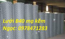 Cung cấp lưới hàng rào B40, lưới B40, lưới thép B40 giá rẻ