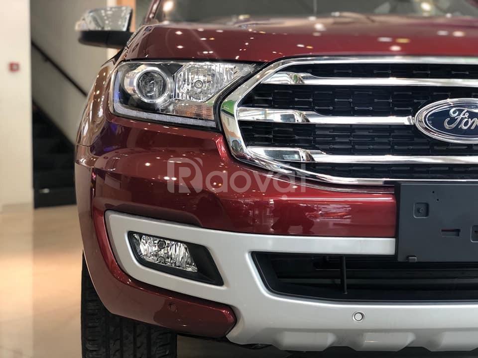 Cần bán gấp xe Ford Everest Bi-Tourbo 2020 (ảnh 4)