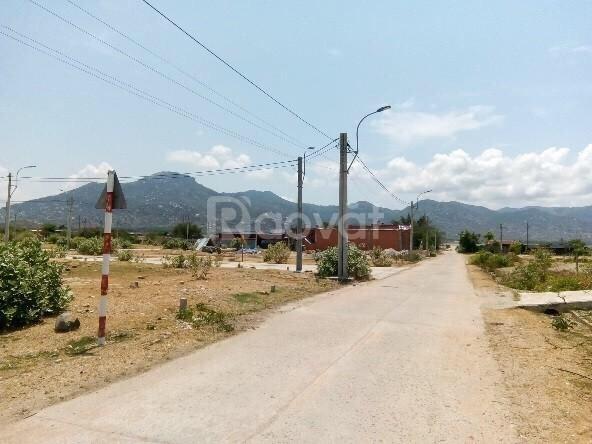 Bán đất mặt tiền đường quốc lộ 1A gần resort Hòn Cò Cà Ná (ảnh 1)