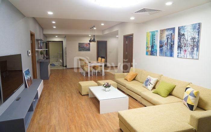 Quỹ căn hộ cho thuê D'Capital giá rẻ chỉ từ 10tr/th
