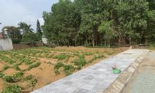 Đất nền Hòa Lạc 100% đã có sổ đỏ giá chỉ từ 13tr/m2