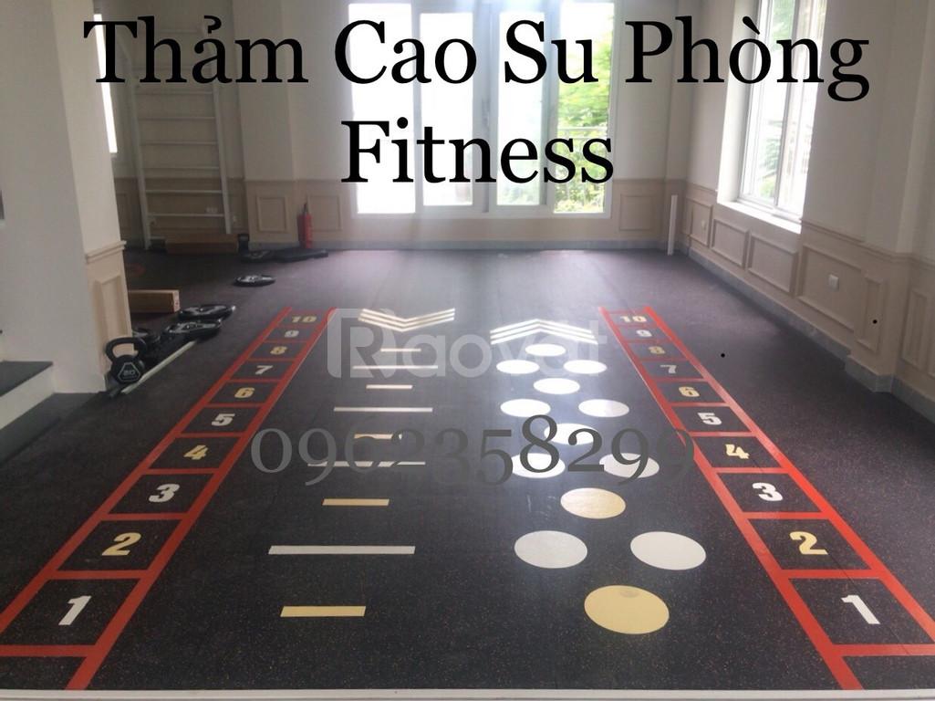 Thảm cao su phòng gym  (ảnh 7)