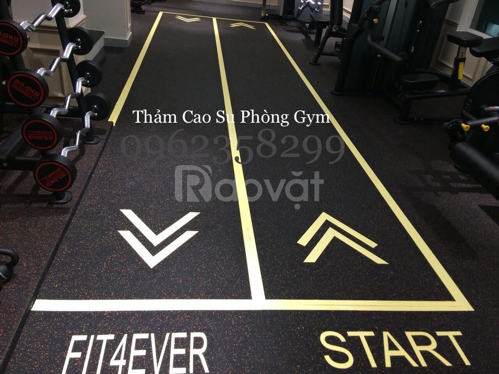 Thảm cao su phòng gym  (ảnh 1)