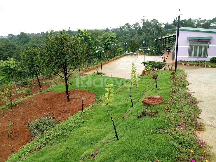 6700m2 đất nghỉ dưỡng  tại Lộc Nga, Bảo Lộc, cách QL20 chỉ 500m