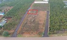 Đất nghỉ dưỡng hẻm Phan Đình Phùng, Bảo Lộc, gần trung tâm