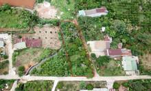 900m2 đất xây nhà vườn tại TP Bảo Lộc, 200m2 thổ cư