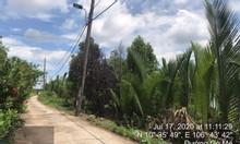 1070m2 đất trồng cây lâu năm đường Gò Me xã Hiệp Phước