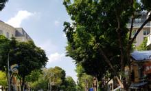 Cho thuê 4 tầng nhà đẹp phố Phan Chu Trinh