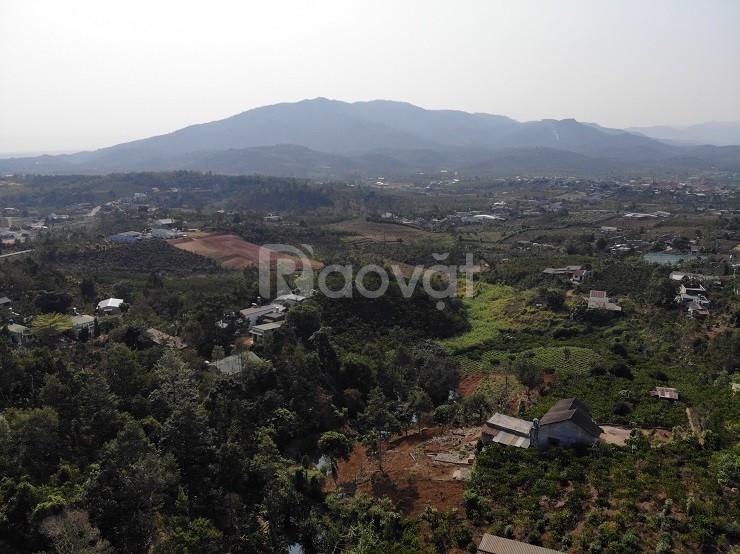 3200m2 đất Lộc Châu, Bảo Lộc, có 400m2 thổ cư, cách QL20 chỉ 100m