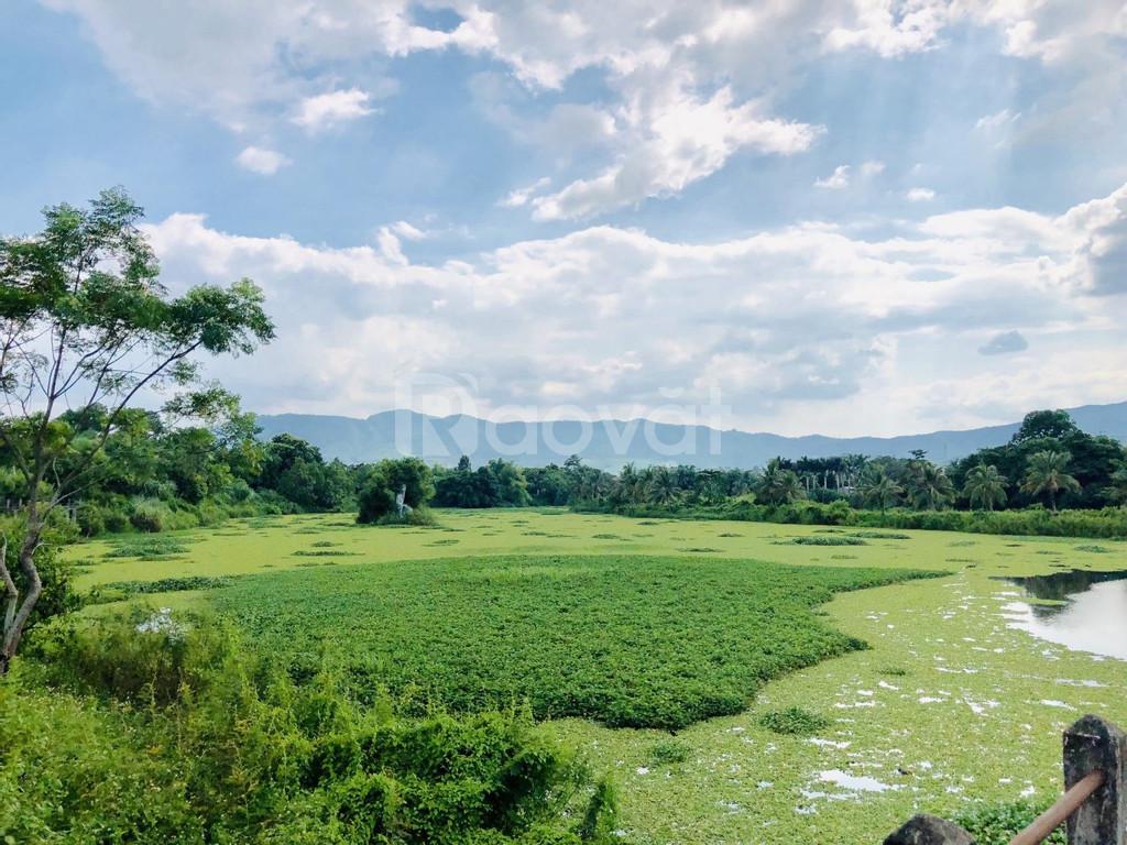 Đất nền Hòa Lạc