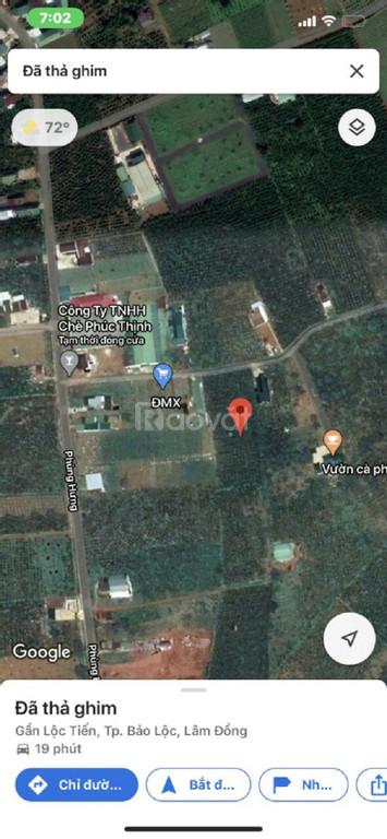 200m2 đất nghỉ dưỡng hẻm Phùng Hưng, phường Lộc Tiến, Bảo Lộc