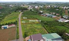 15x42m mặt tiền Trần Nhật Duật, Bảo Lộc, có 260m2 thổ cư, đất bằng đẹp