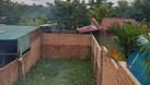 Nhà mặt tiền Lý Thái Tổ, Bảo Lộc, DT 5x43m (ảnh 7)