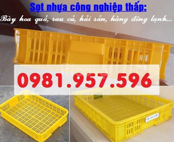Sọt nhựa công nghiệp 1T, sóng nhựa 1T trong siêu thị (ảnh 1)
