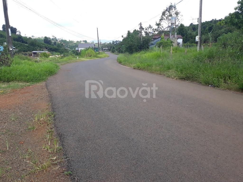 Đất 2 mặt tiền đường Phùng Hưng, P. Lộc Tiến, TP.Bảo Lộc (ảnh 1)