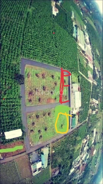 Đất 2 mặt tiền đường Phùng Hưng, P. Lộc Tiến, TP.Bảo Lộc (ảnh 4)
