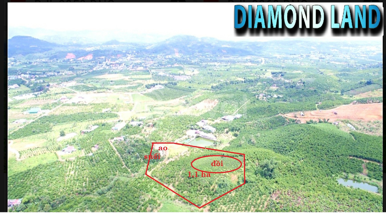 Bán 1,1ha đất tại Lộc Châu, TP.Bảo Lộc, 320 triệu/ 1000m2