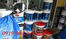 Sơn nước kcc, bột trét kcc, sơn koreshield giá rẻ cho mọi công trình