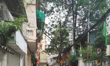 Đất Giáp Nhị, Thịnh Liệt, Hoàng Mai, ô tô vào, 96m2, chỉ 57tr/m2