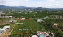 4000m2 đất tại TP Bảo Lộc, mặt tiền đường Blaoxire 40m